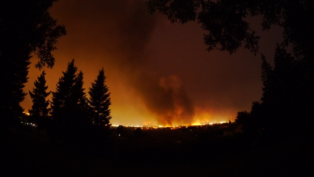 View from my backyard at about 11 PM. Thankfully there was a river between us and the fire.